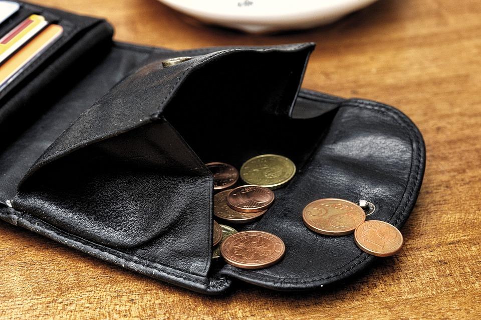 mince v portmonce